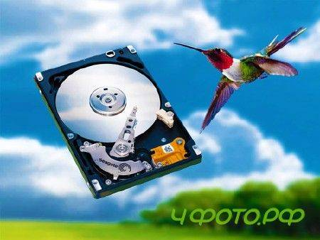 Seagate File Recovery v.2.0.7631 (2012/ENG)