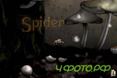 Spider: The Secret of Bryce Manor ( iOS )