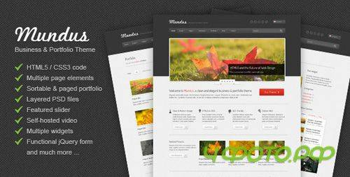 ThemeForest - Mundus - Business and Portfolio HTML Template - RiP