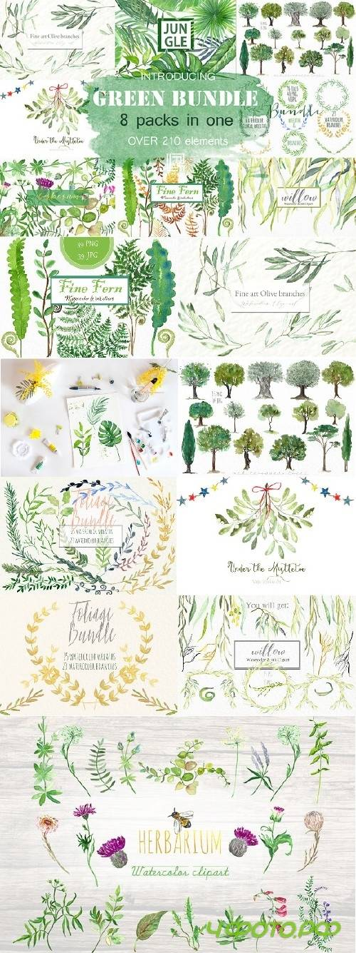 Green Bundle. Watercolor clipart - 703867