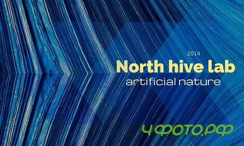 North hive lab - Artificial nature
