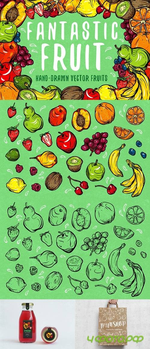 Fantastic Fruit - 796960