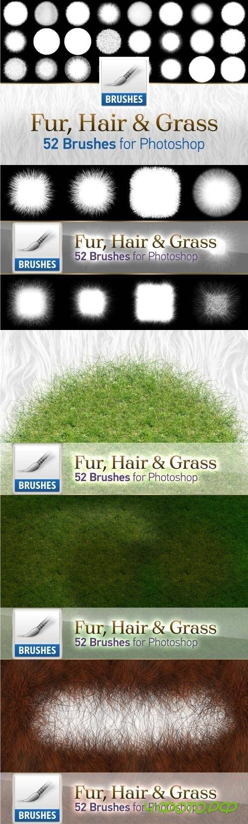 Fur, Hair and Grass Brushes - 1558188