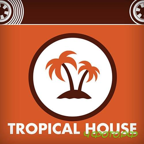 Mixtape Production Library - Tropical House
