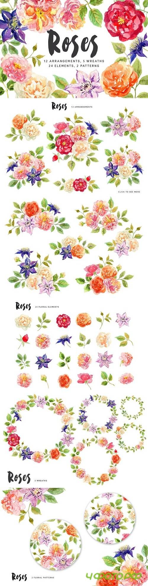 Roses. Watercolor collection - 1759881