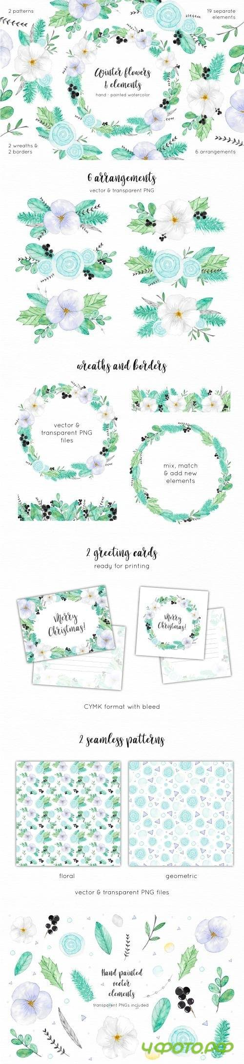 Winter & Christmas Flowers Pack - 2038147