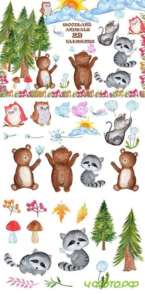 Watercolour forest animals clipart 1600337
