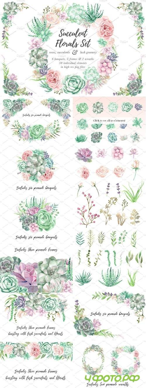Watercolor Succulents, Greenery - 2418695
