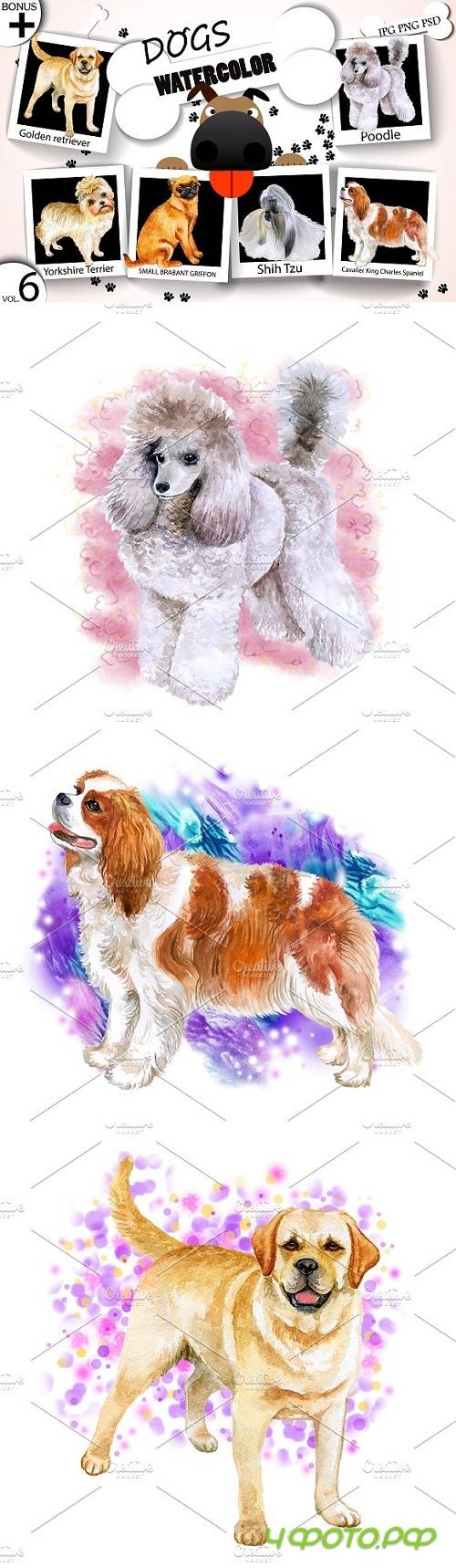 Watercolor Dogs - Collection 6 of 12 - 1717415