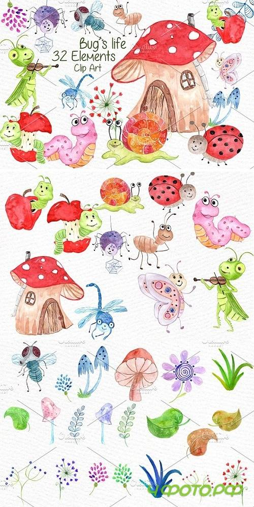 Watercolor bugs clipart - 638644