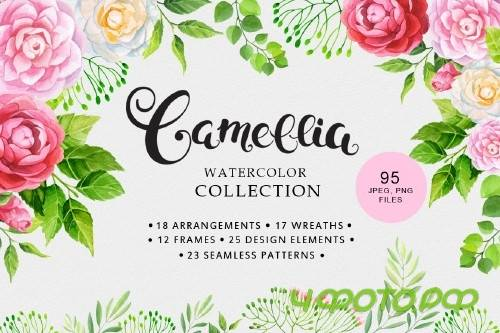 Camellia Watercolor Collection 80465