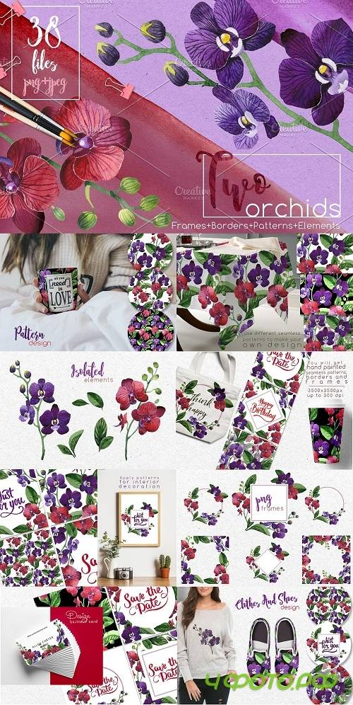 Two orchids PNG aquarelle set - 2561532