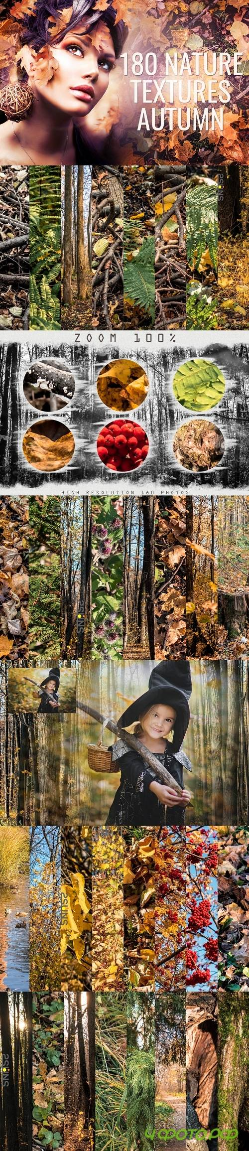 Autumn textures, fine art, textures, backdrop, photoshop - 374432 (Full collection)