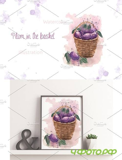 Plum in the basket - 3992255