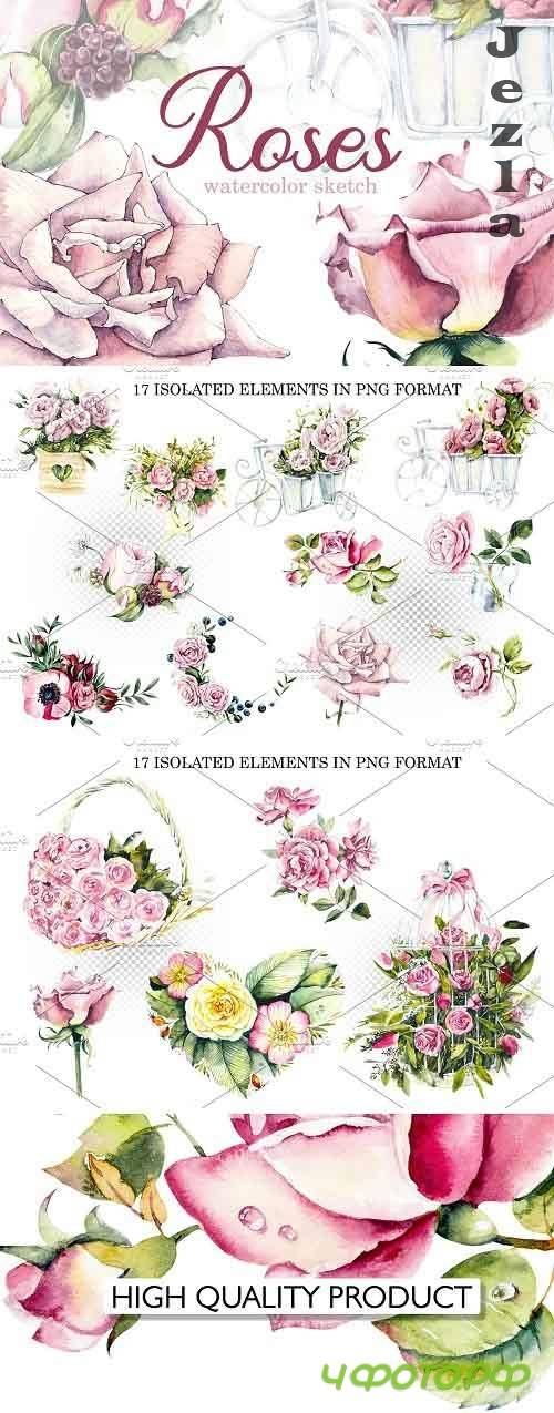 Watercolor Pink Roses - 5812854