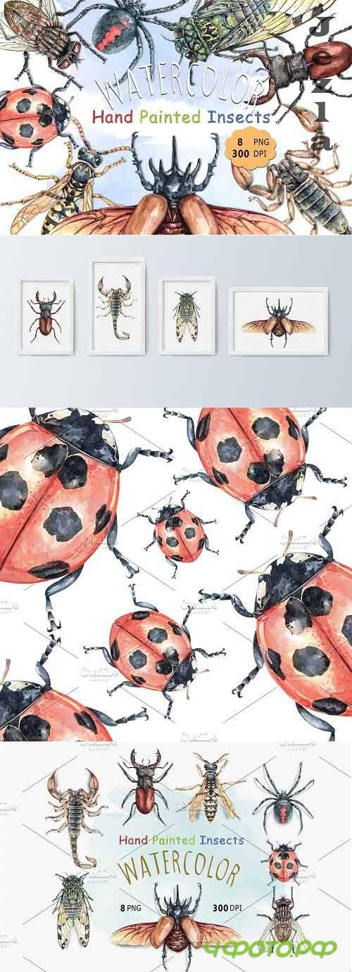 Watercolor Insects and Spider - 5883481